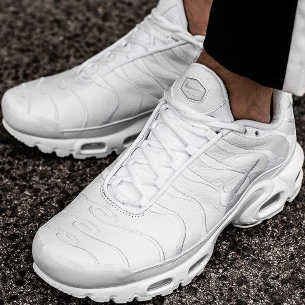 Nike Air Max Plus (AJ2029-100)